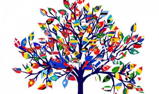 """Vincitori """"Giornata europea delle lingue"""""""